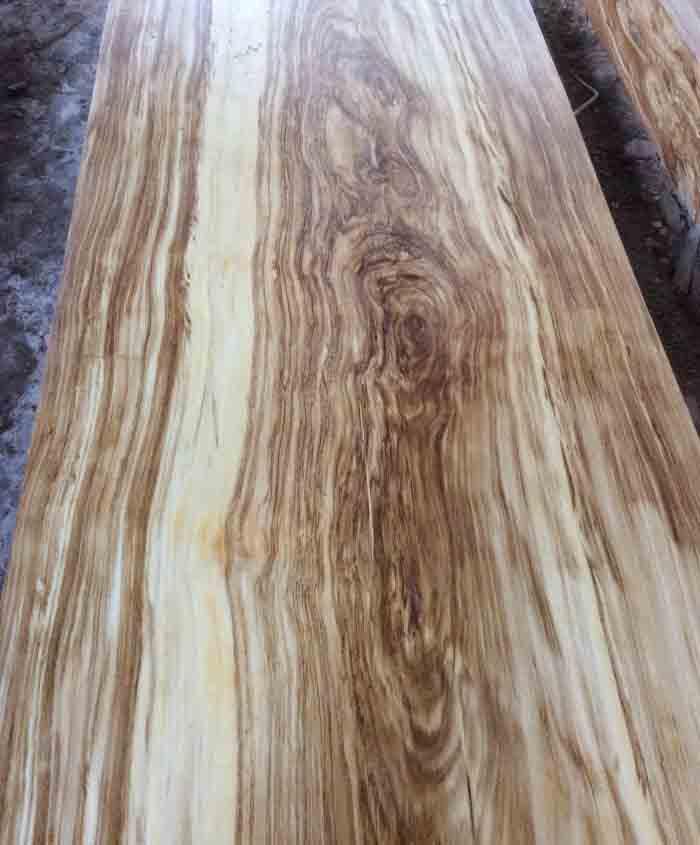 Bàn ghế gỗ hương xám có tốt không